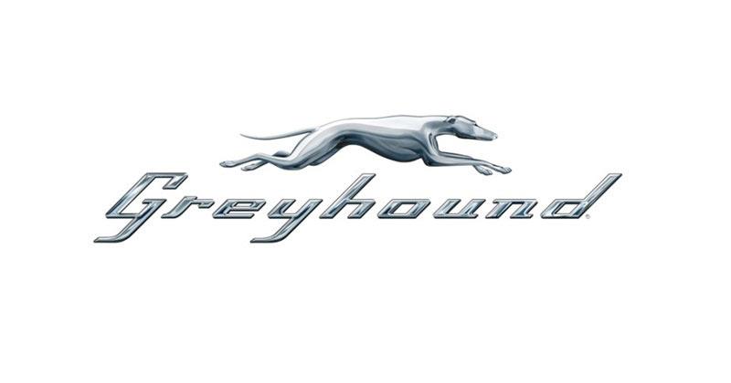 Greyhound Brooks Alberta
